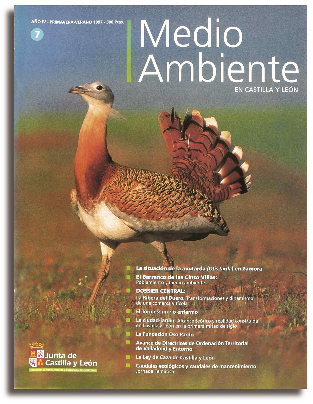 REVISTA MEDIO AMBIENTE 01