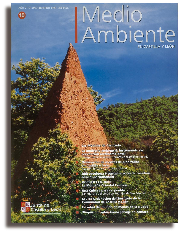 REVISTA MEDIO AMBIENTE 02
