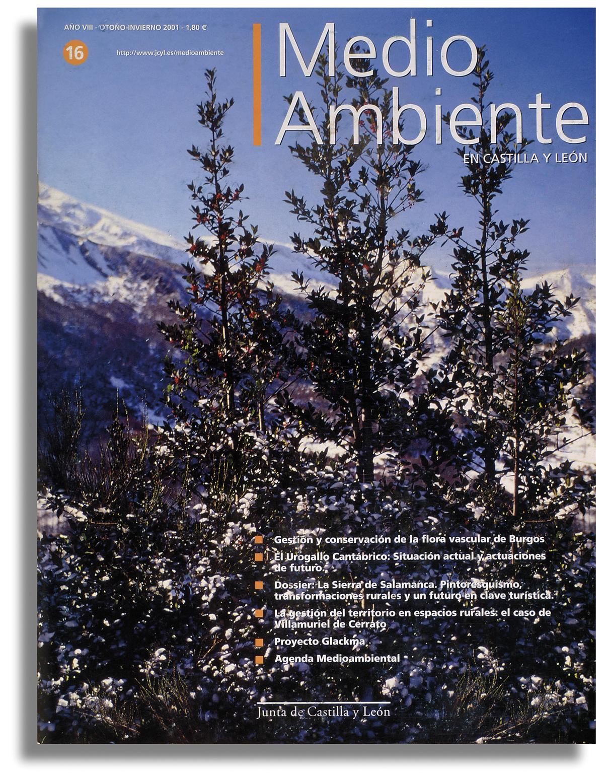REVISTA MEDIO AMBIENTE 06